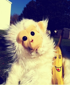 I also have a pet puppet monkey who thinks he is real - he even has a pet banana.