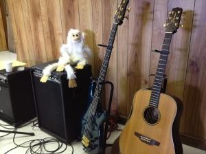 monkey and guitars